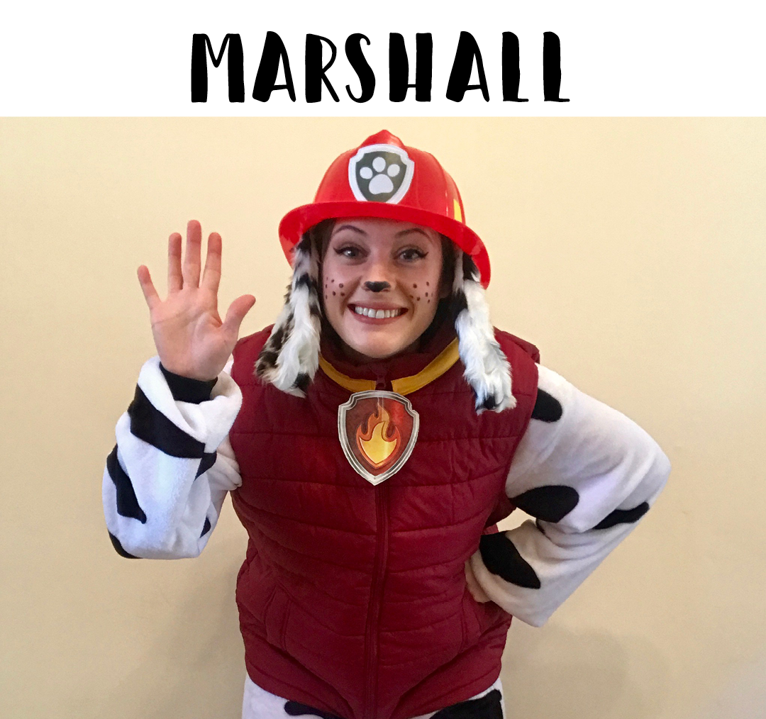 Marshall from Paw Patrol provides entertainment for birthday parties, christenings, 1st birthdays and all events across Sydney.